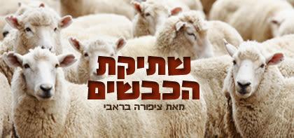 שתיקת הכבשים