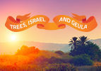 Trees, Israel and Geula
