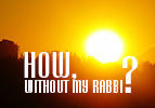 How, Without my Rabbi?