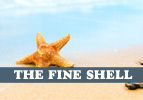 The Fine Shell