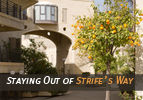 Staying Out of Strife's Way
