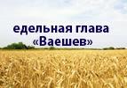 Недельная глава  «Ваешев»