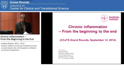 Chronic inflammation — From the beginning to the end