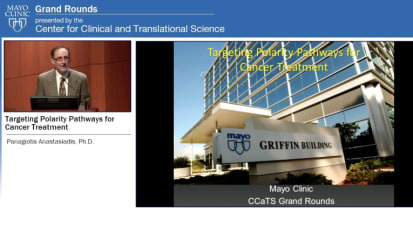 Grand Rounds: Targeting Polarity Pathways for Cancer Treatment