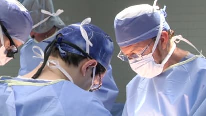 Lowering rejection risk in organ transplants — Mayo Clinic