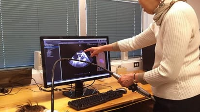 Picture-Perfect? Heart-Test Simulator Leaps Forward