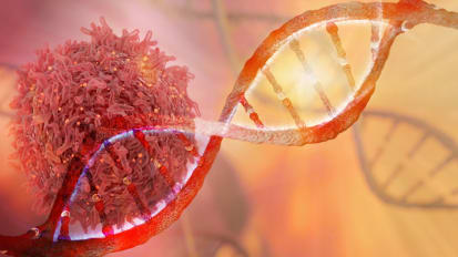 Fundamentals of Cancer Immunotherapy