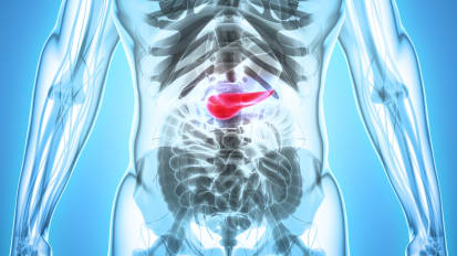 Pancreas Transplantation: The Next Generation
