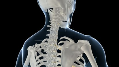 Cervical Spine Injury Evaluation