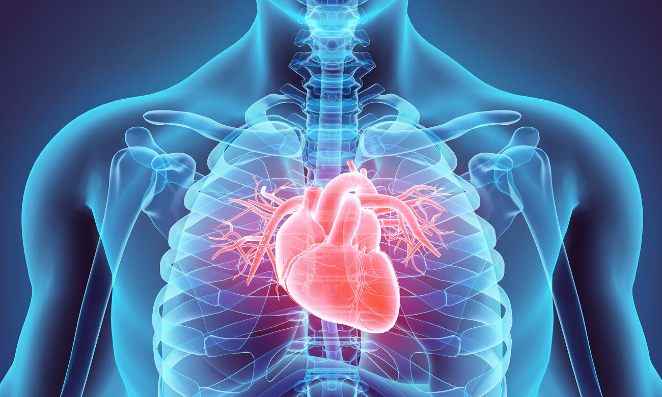 Innovations in the Johns Hopkins Heart Transplant Program - Johns Hopkins Medicine