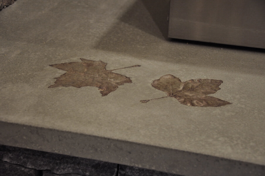 Leaf Pattern Inlay in Exterior Concrete Countertop