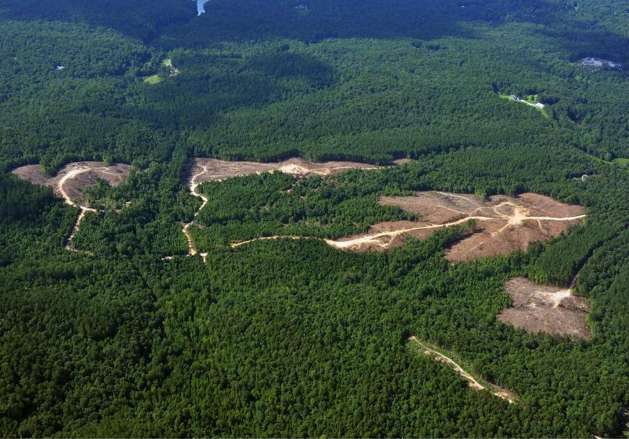 Aerial View of Timber Clearing at Dam Site