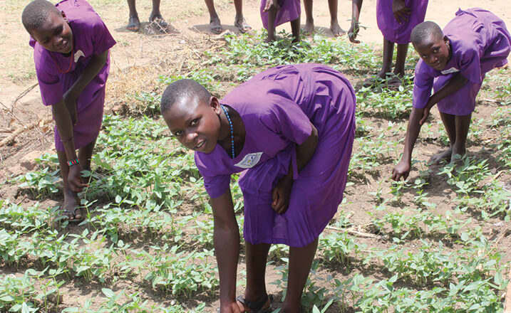 Ugandan school girls work in their school garden