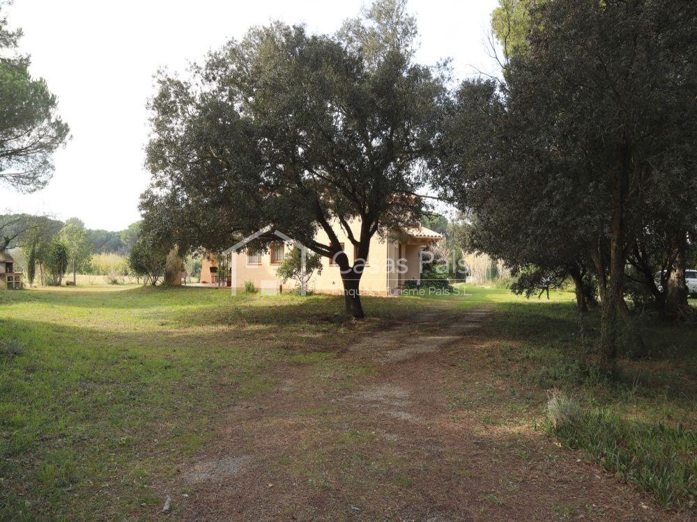 Impressionant masia envoltada de camps i pinedes