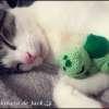 Sleepy Bulbasaur Amigurumi - Pokemon - La Calabaza de Jack