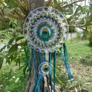 Peacock's Galaxy Dream Catcher