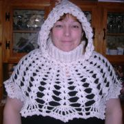 Shell hooded cowl