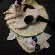 kitty bed/rug inspired by button blankie