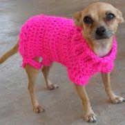 Sweetness - Crochet Dog Sweater