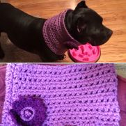 Custom dog cowl....a request from a friend