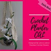 Egret Orchid & Planter