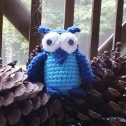 Cuddly Owl