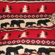 Pam's cabin blanket