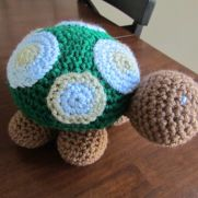 Kame the Turtle