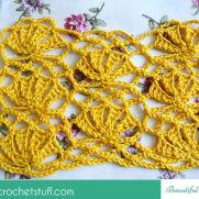 Beautiful Lace Stitch Tutorial