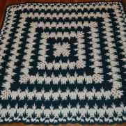 Spiked Cluster Afghan