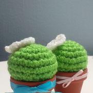 Housewarming Cactus