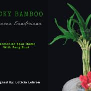 Crochet Lucky Bamboo