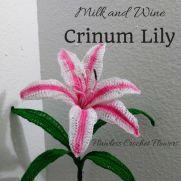 Free Crinum Lily Pattern (Milk and Wine)