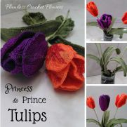 Prince & Princess Tulips