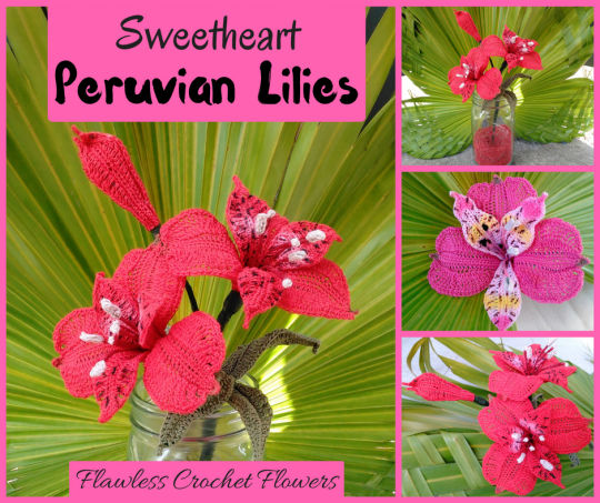 Sweetheart Peruvian Lily / Alstroemeria