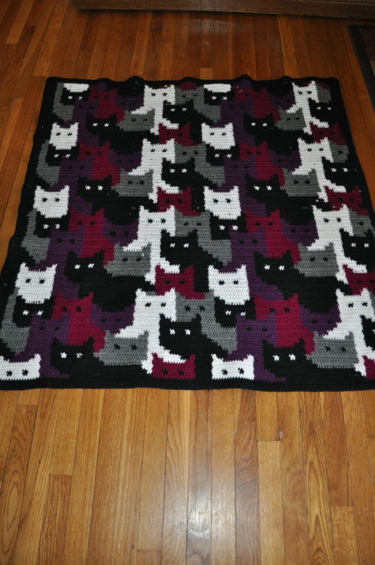 Colorwork with Cats