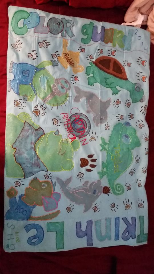 Puffy Painted Pillow Case
