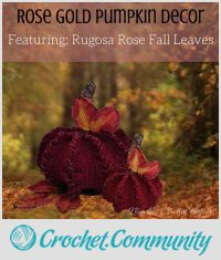 Rose Gold Pumpkin With Rugosa Rose Fall Leaves