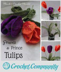 Prince & Princess Tulips