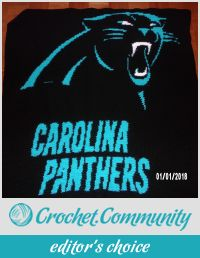 Carolina Panthers graphghan