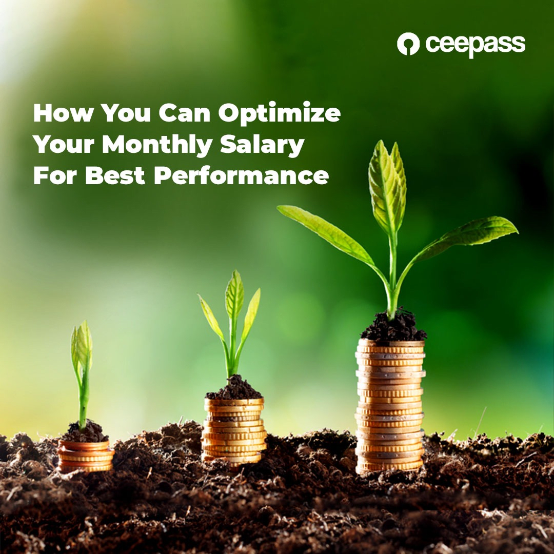 HOW YOU CAN OPTIMIZE YOUR MONTLY SALARY FOR BEST PERFORMANCE