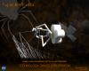 SpiderFab, Konsep Revolusioner Terbaru dari NASA