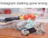 Akibat Fatal Stalking di Instagram