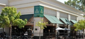 $10 Lunch Deals at Paddy Malone's