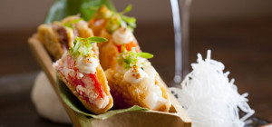 $25 Tacos & Cocktails at Nobu