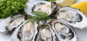 $1.50 Fresh Oysters at Cafe Citrus