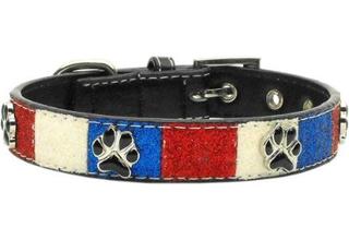 American style pet collar
