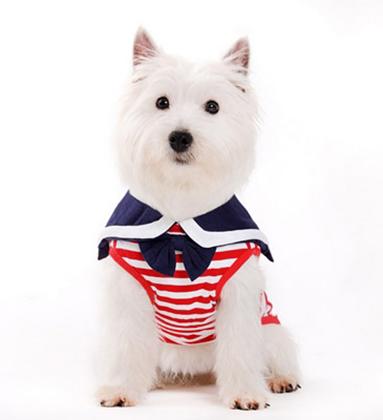 pet shirts - american style