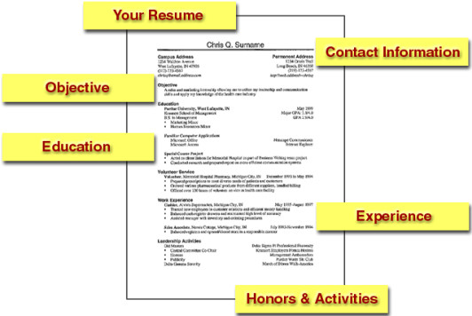 do most employers prefer a resume with a focus or versatility