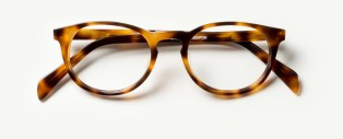 Brighton Eyeglasses